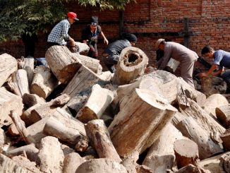 pashupati woods for funeral